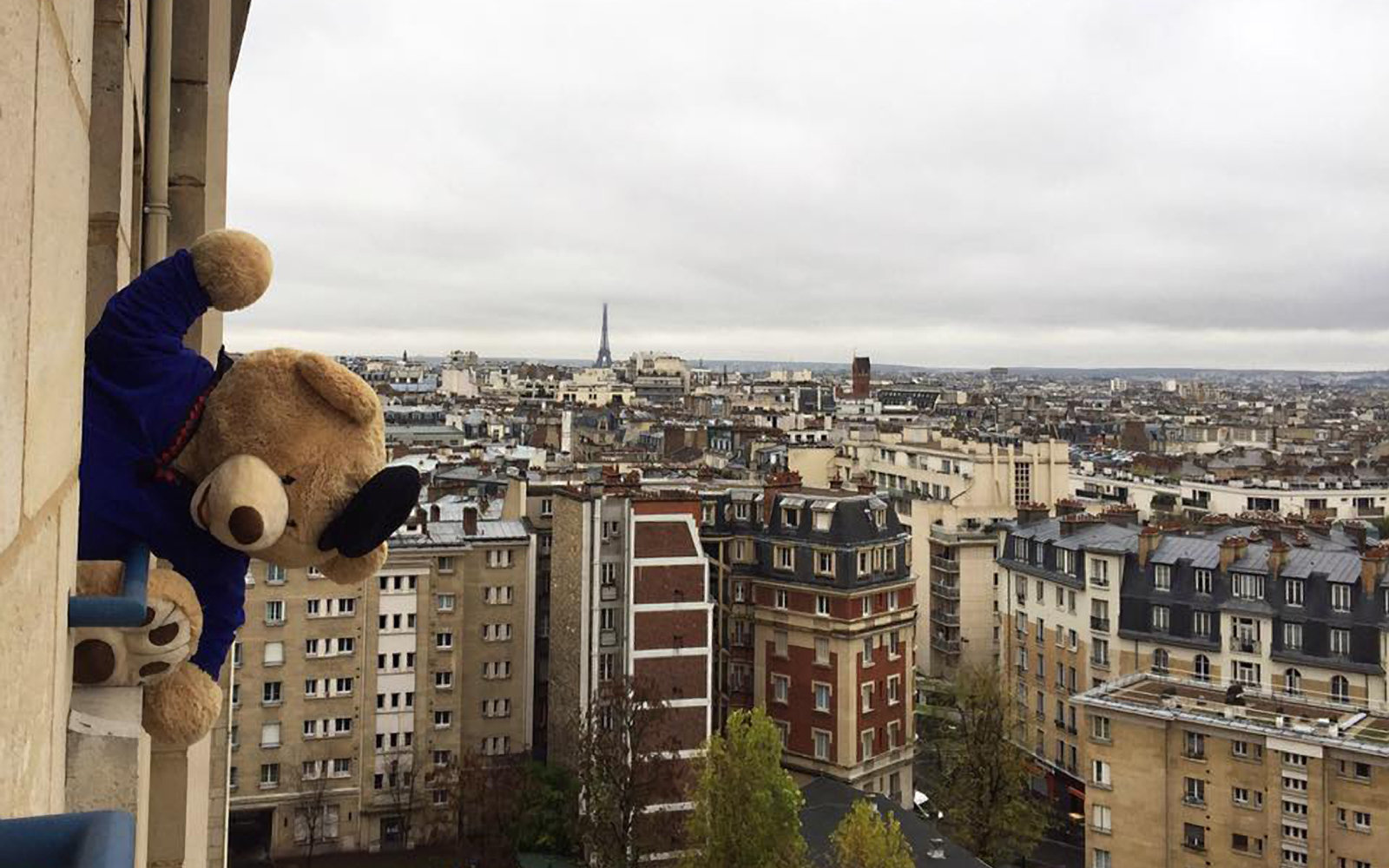 Teddy bear enjoying the views in Paris