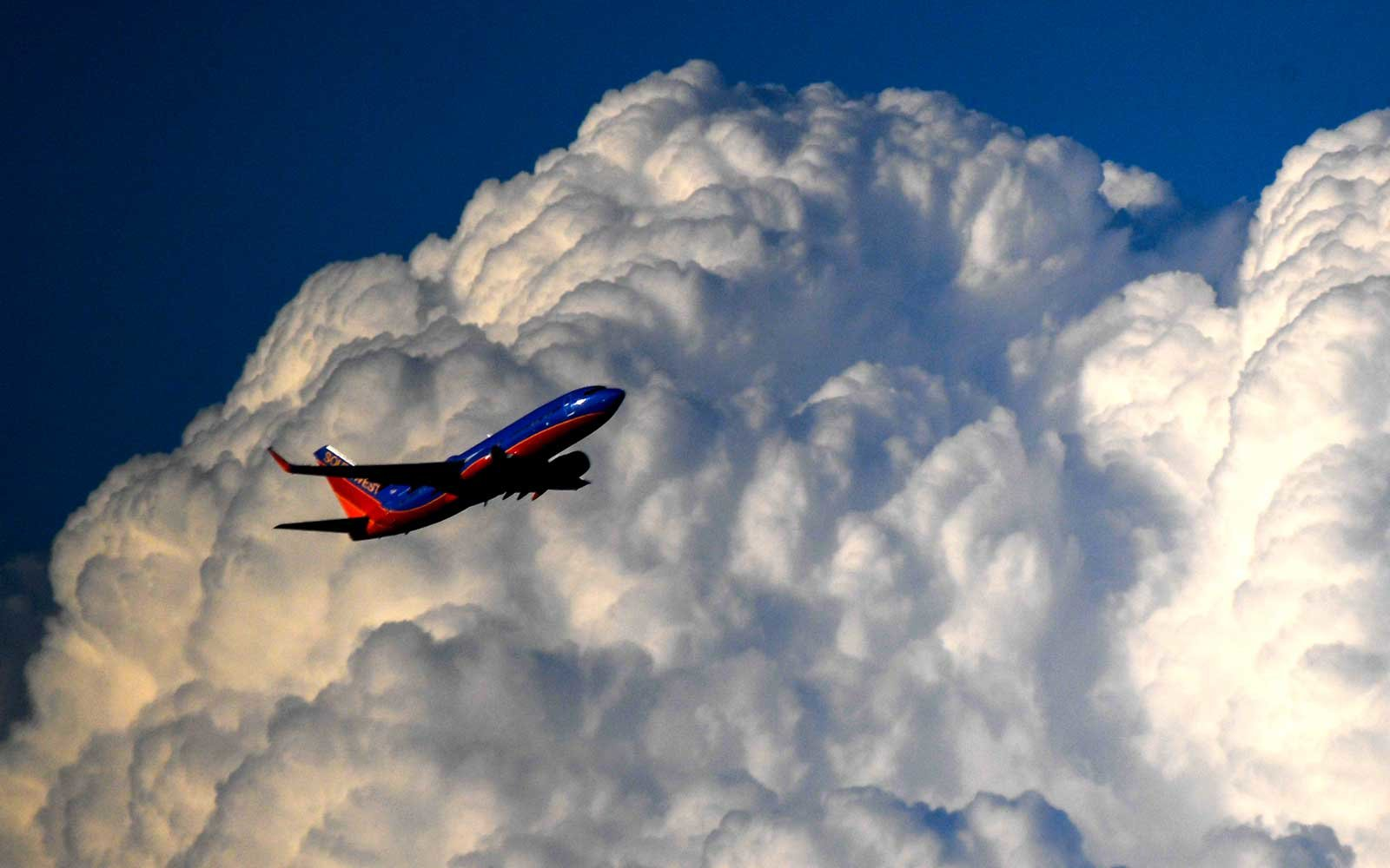 Southwest flight turned around after human heart left on board