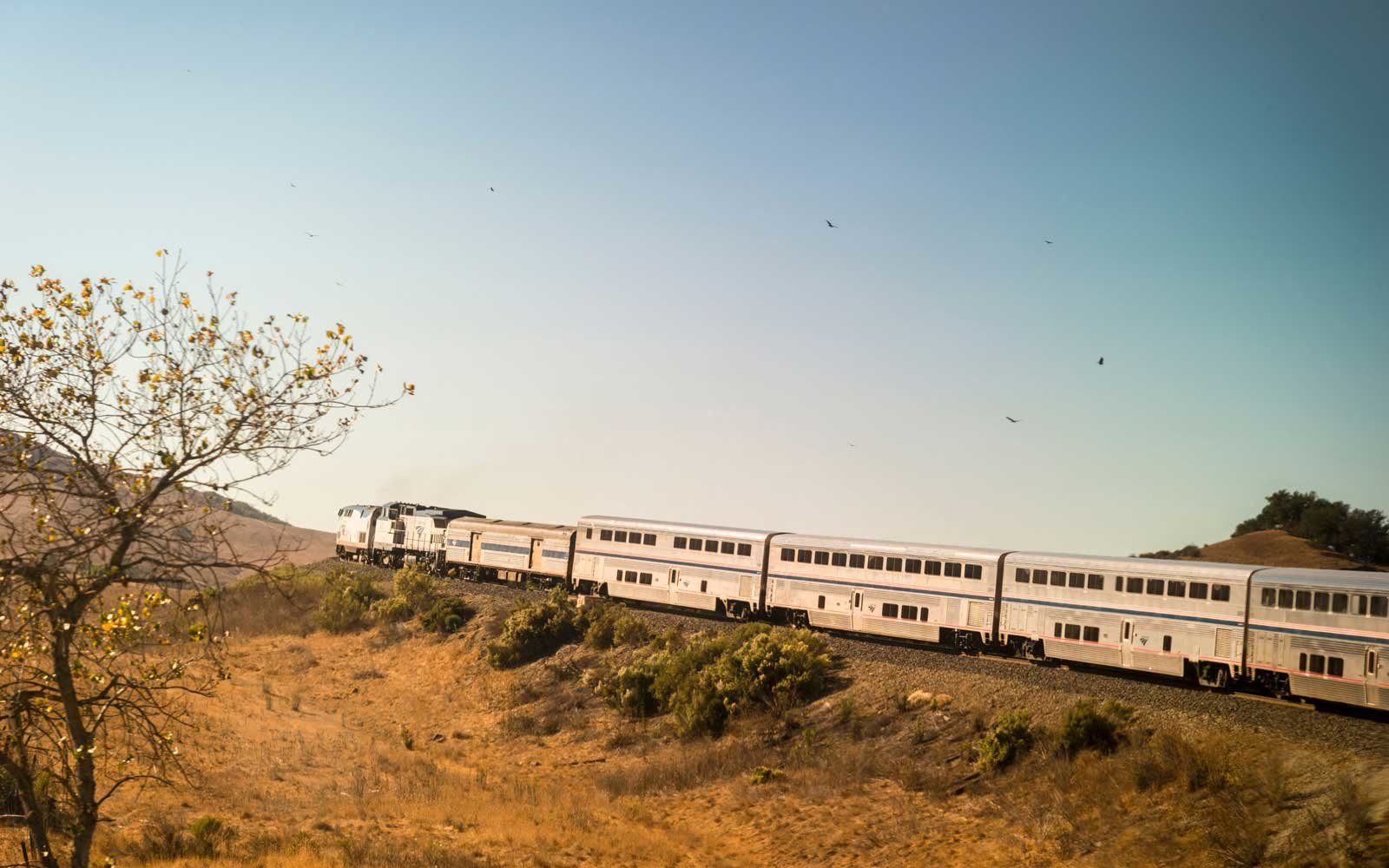 Amtrak Coast Starlight train