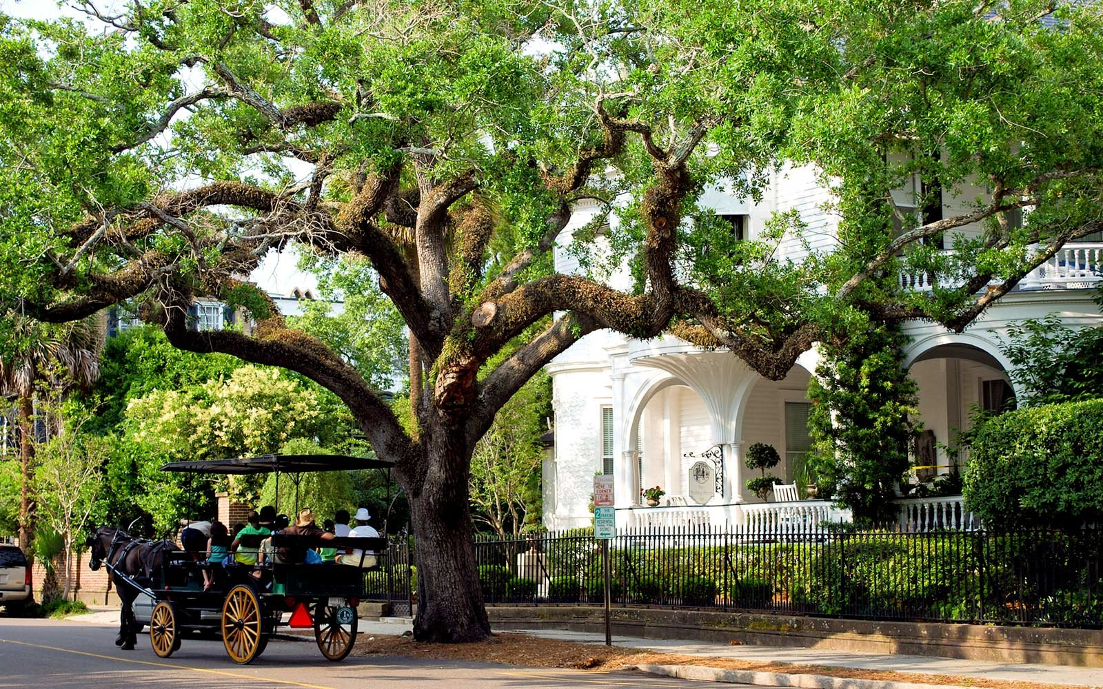 Historic Carriage Ride, Charleston, South Carolina