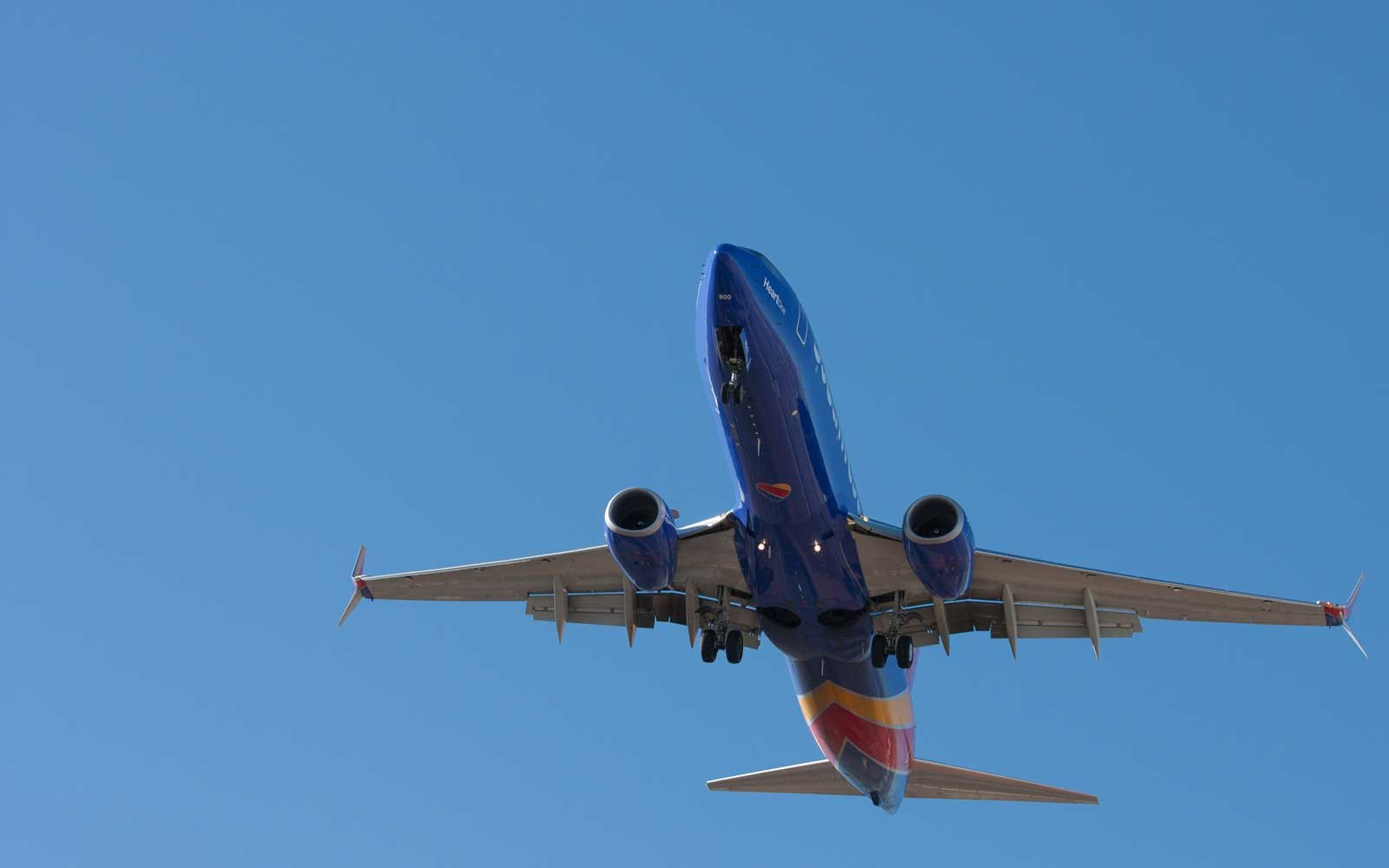 Southwest Is Giving New Credit Card Holders a One-year Companion Pass — and It's Seriously Unheard Of | Travel + Leisure