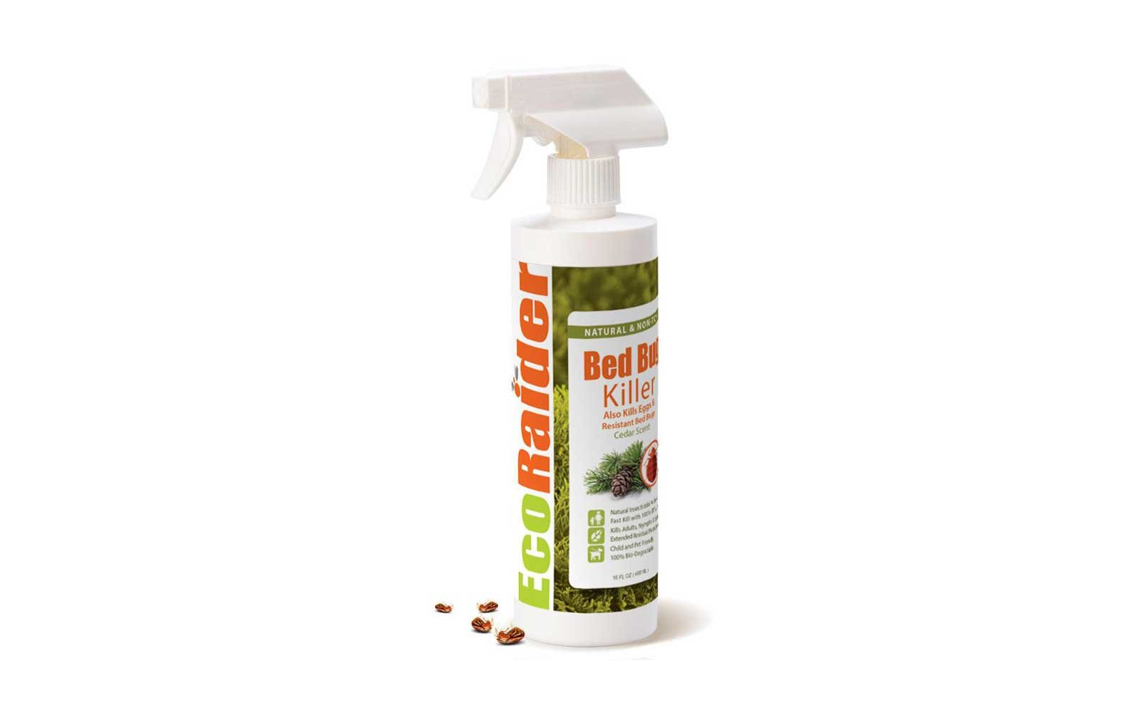 best bed bug spray ecoraider