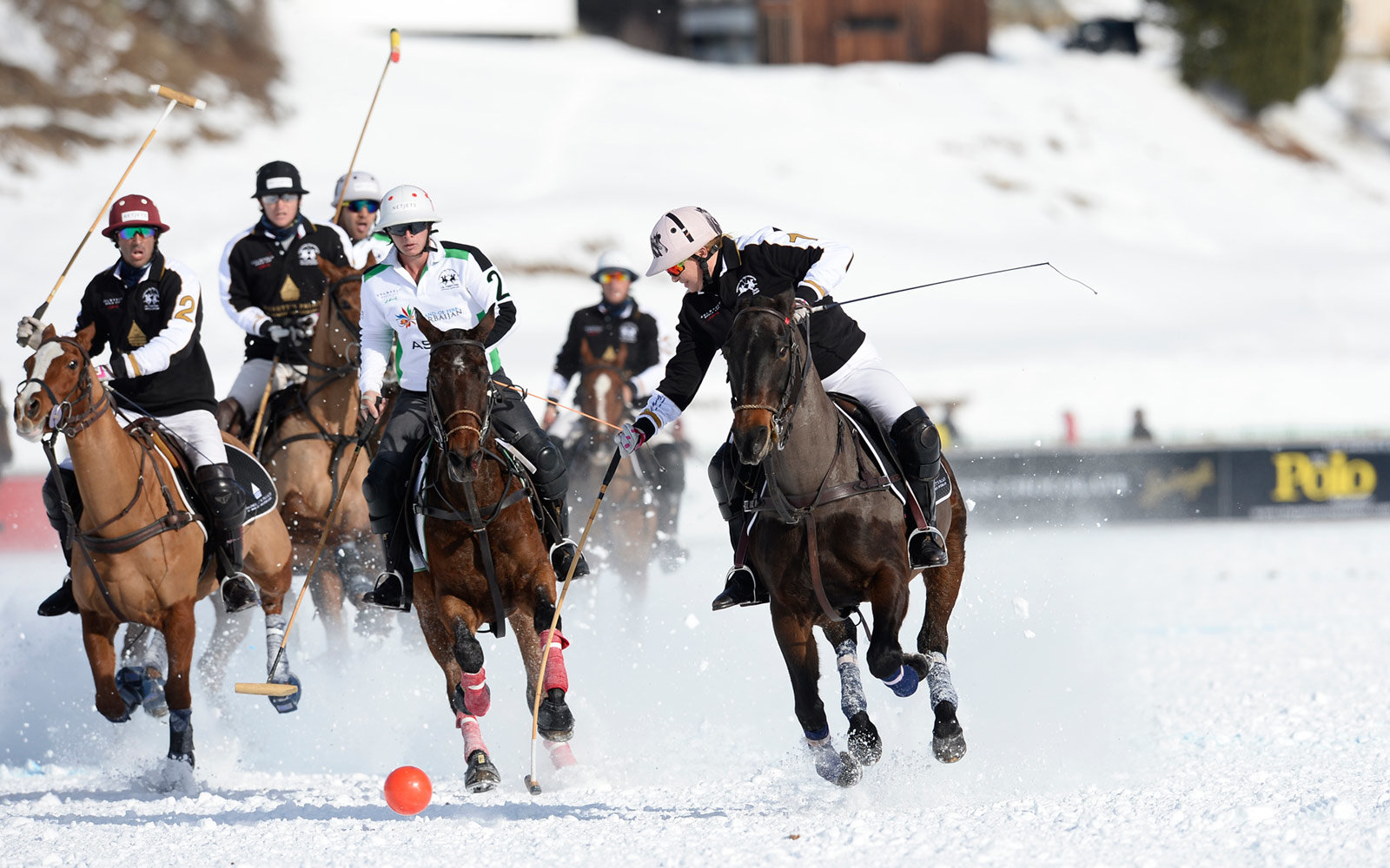 Snow Polo Tournament, St. Moritz, Switzerland
