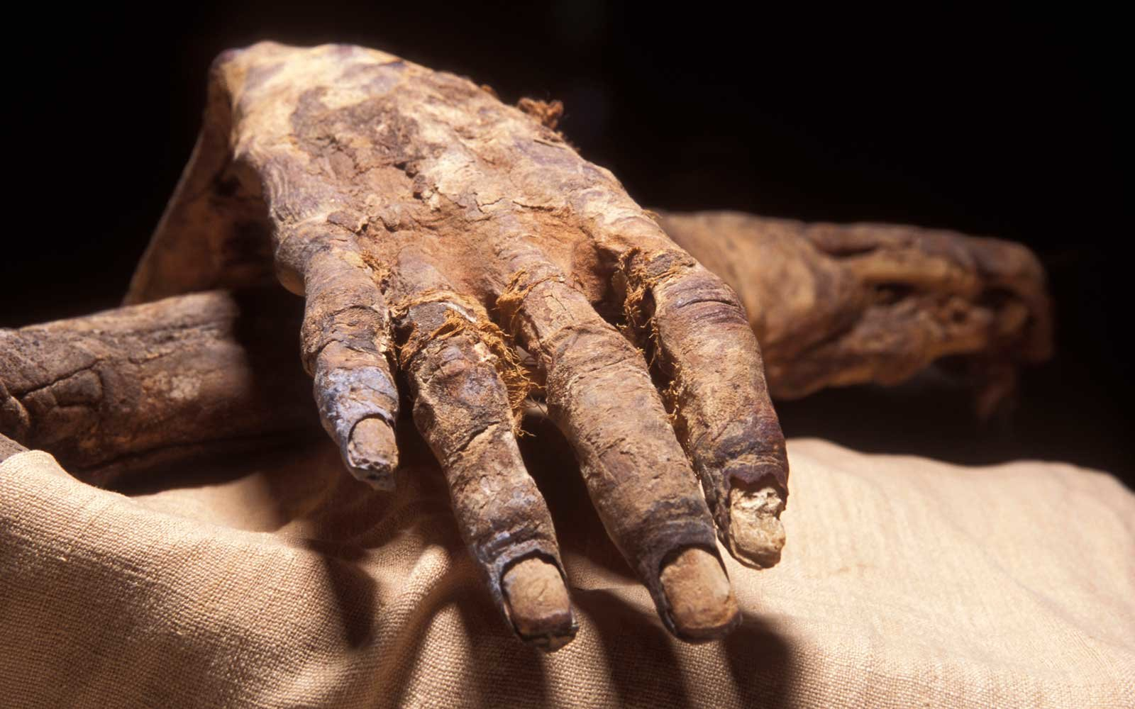 Mummy in Egypt