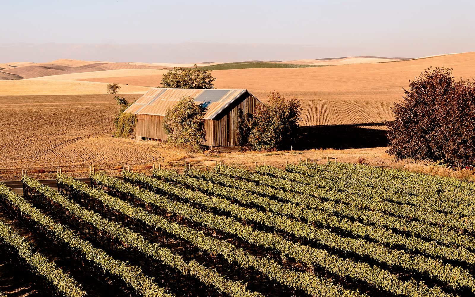Abeja Winery in Walla Walla, Washington