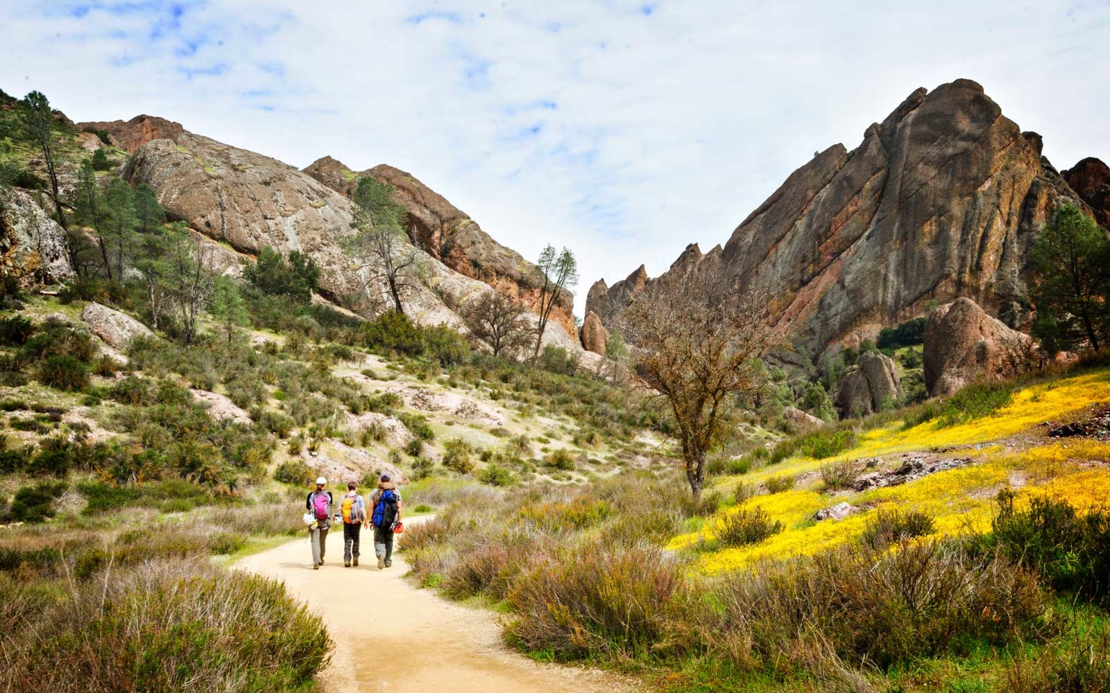 Rock climbing and cave exploring are popular activities visitors can enjoy at Pinnacles National Park.