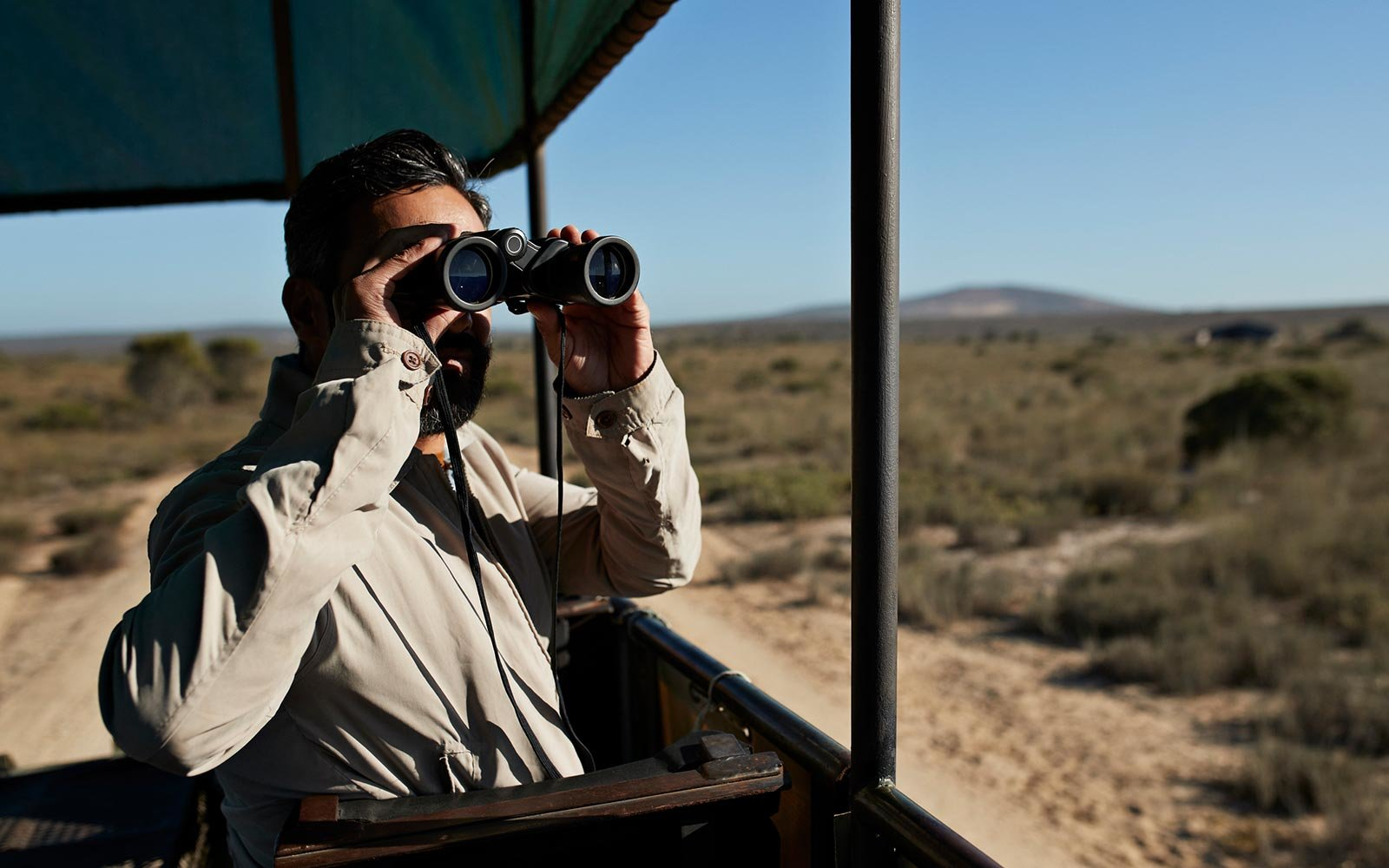 The Best Binoculars for Spotting Wildlife on Safari