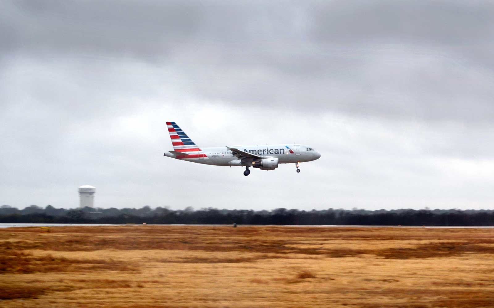 American Airlines plane makes emergency landing after striking goose mid-air