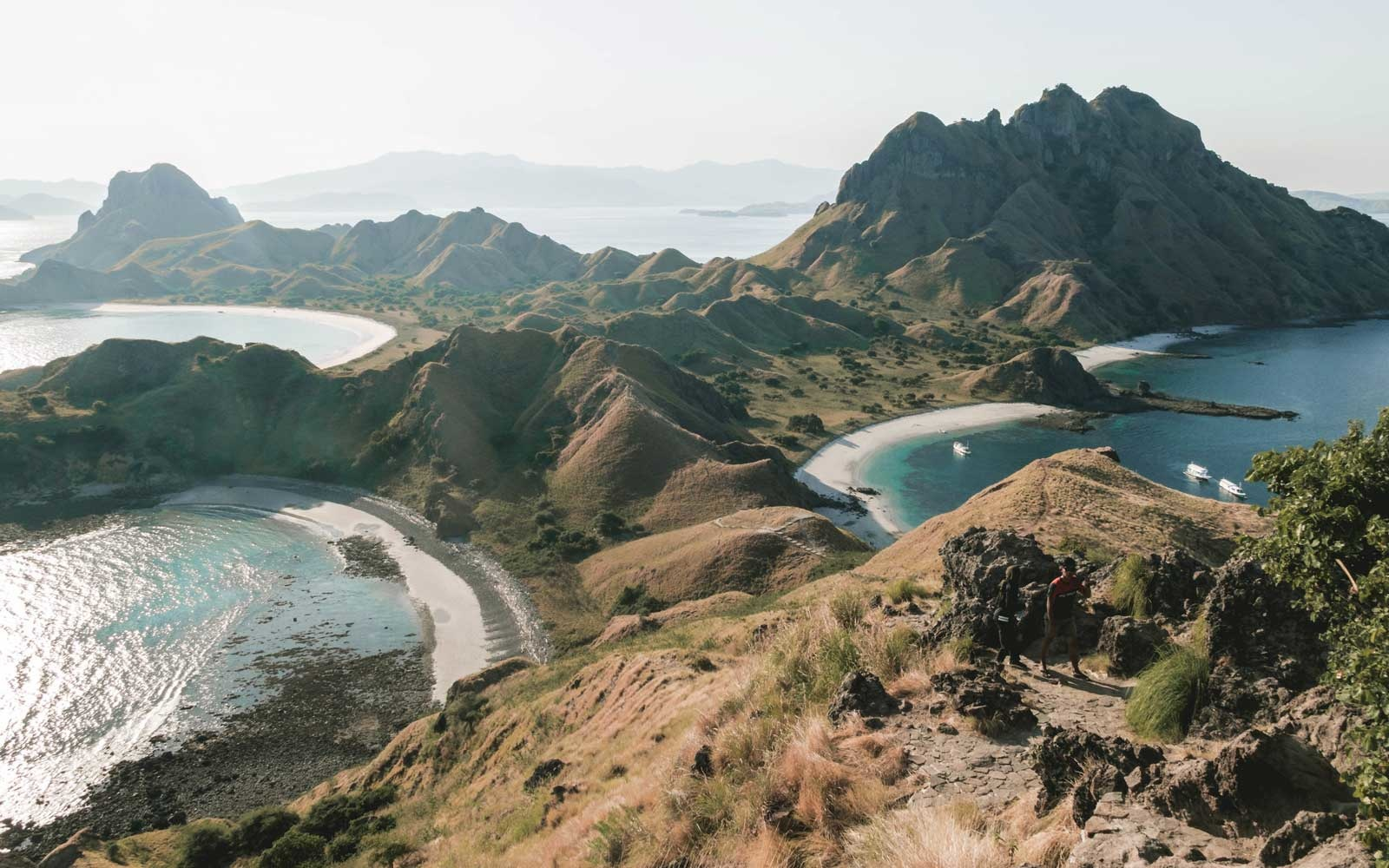 Komodo Island Is Closing to Tourists Because People Are Stealing Dragons