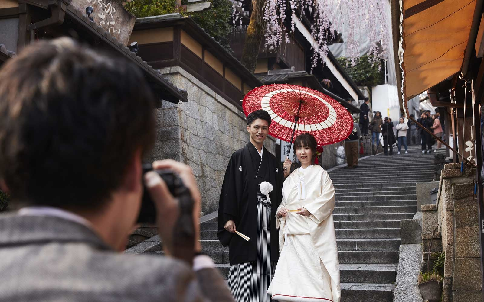 Wedding Photos during cherry blossom seasons in Kyoto