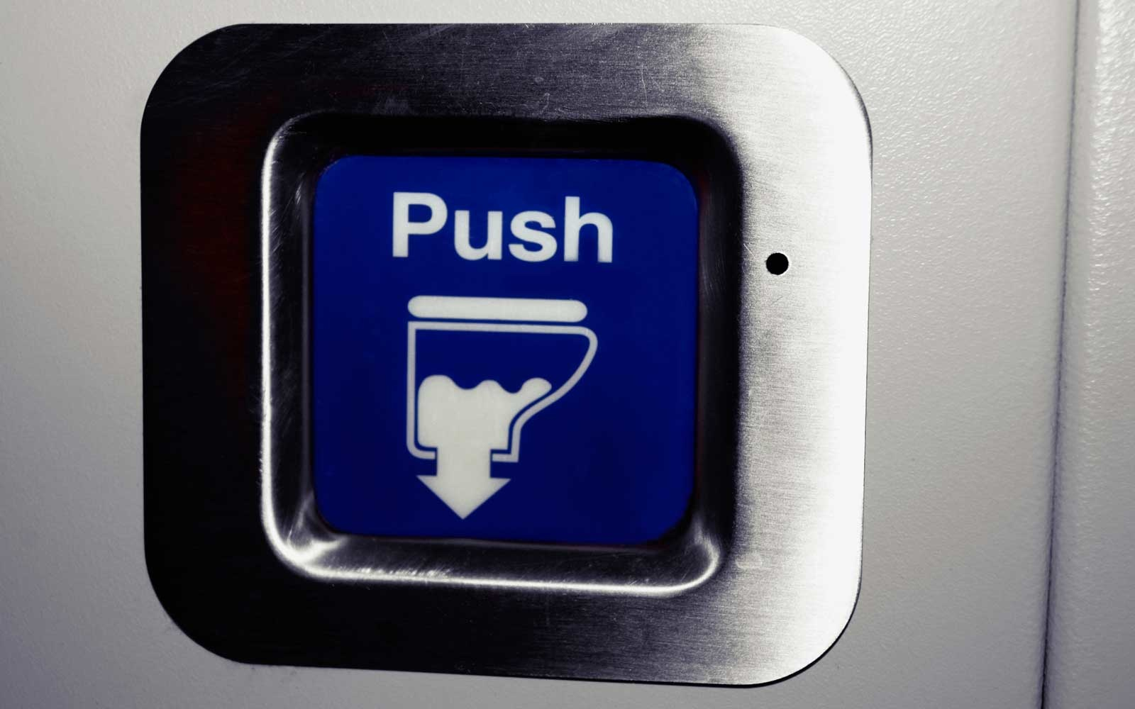Airplane lavatory flush button