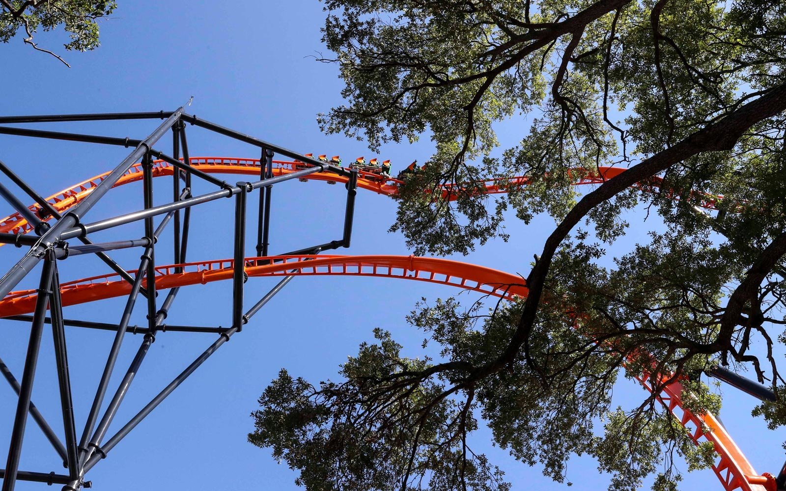 Busch Gardens Opens the Tallest — and Scariest — Launch Coaster in Florida