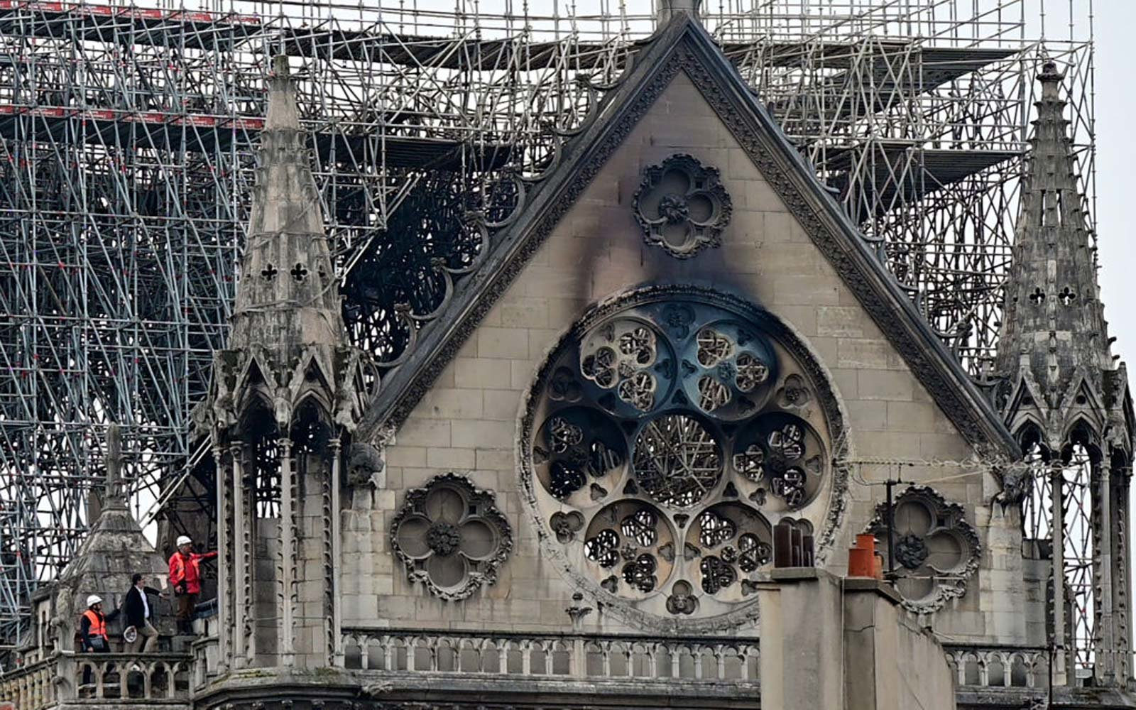 Notre Dame's Beehives That Produce 165 Pounds of Honey a Year Survived the Fire