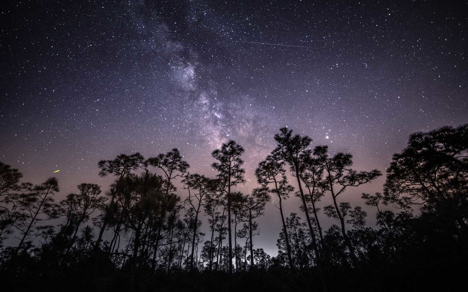 Eta Aquarid Meteor Shower, Babcock Wildlife Refuge, Florida