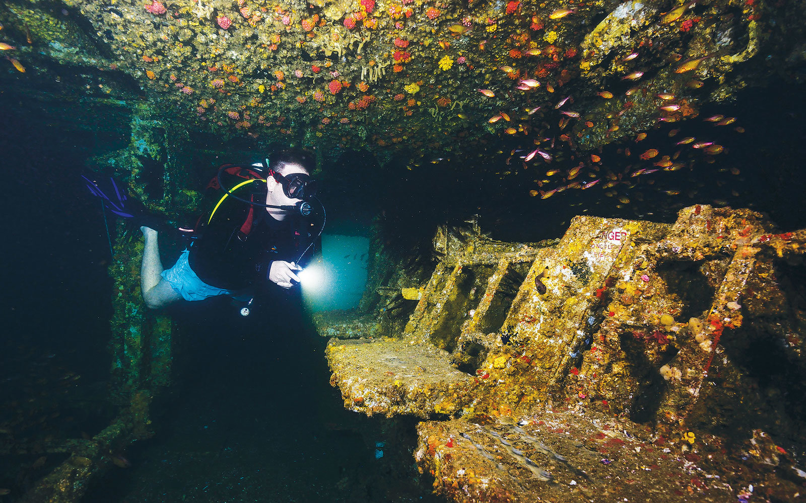 Australia's Waters Have More Than 8,000 Shipwrecks — Here Are the Coolest Ones to Dive to