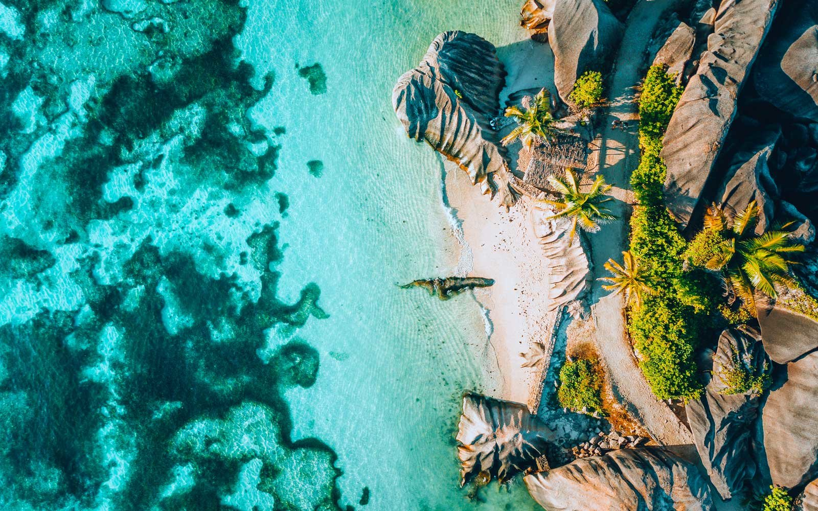 Aerial view of beach, Seychelles