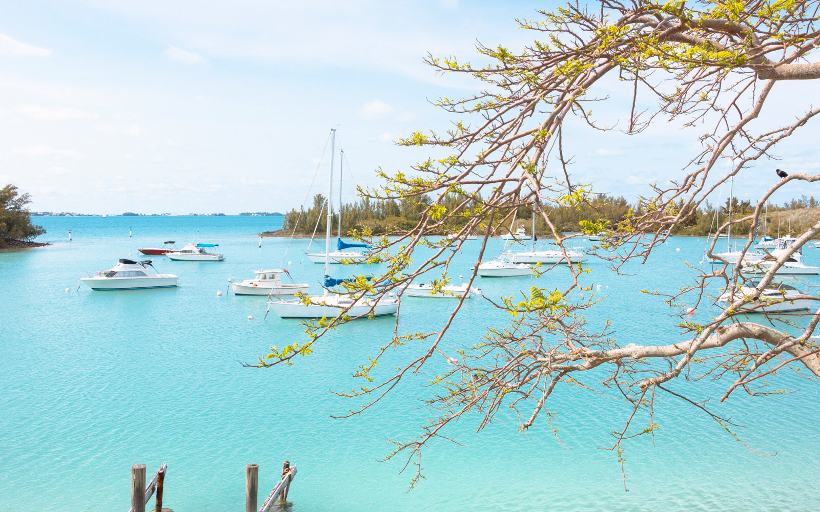 The Best Outdoor Activities in Bermuda