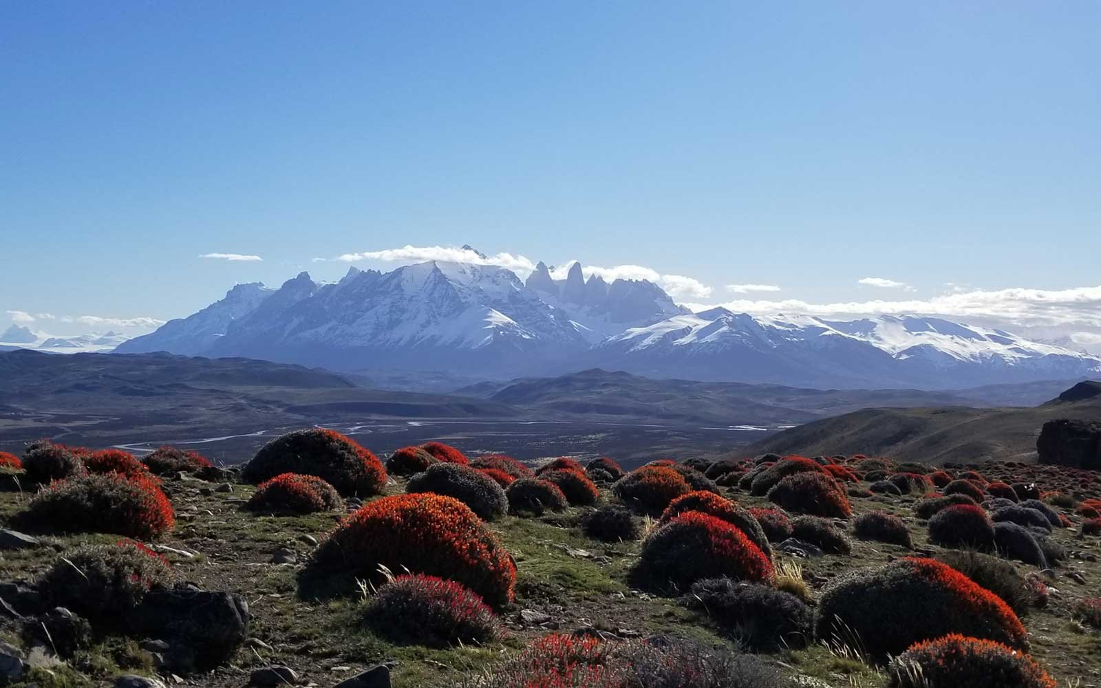 Guide to Patagonia Experience