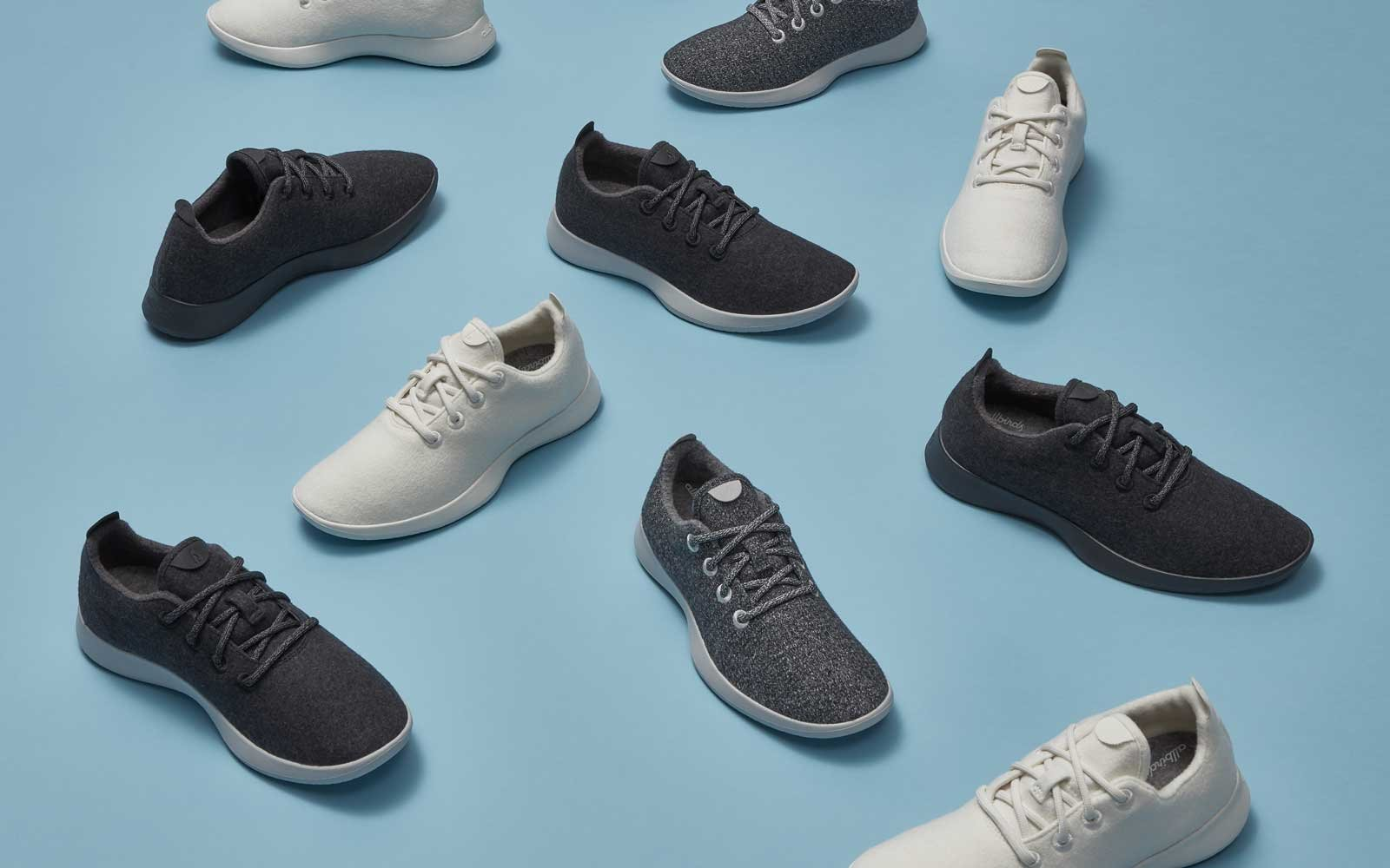allbirds shoe review