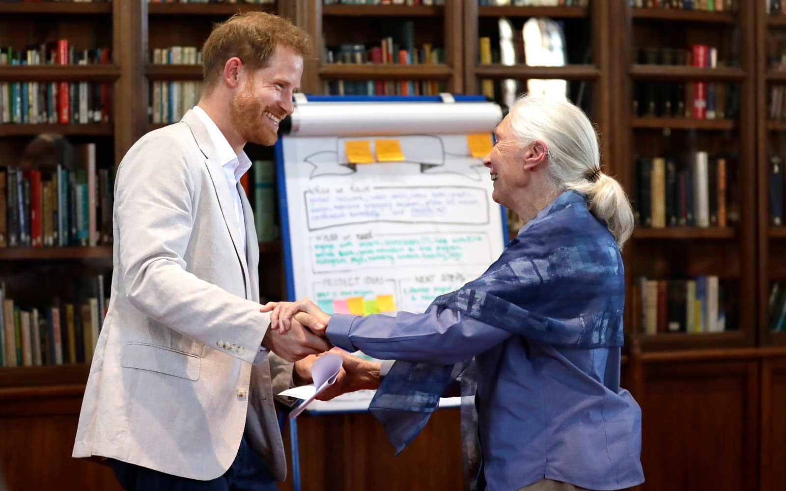 "Prince Harry happily broke royal protocol by performing ""chimp greeting"" with Jane Goodall"
