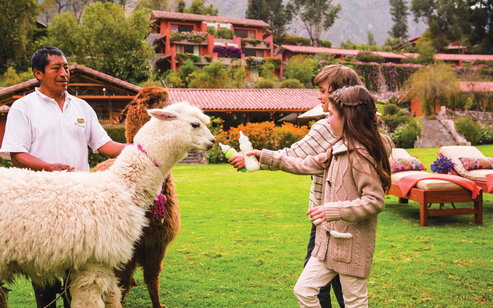 Baby alpacas at Belmond Hotel Rio Sagrado