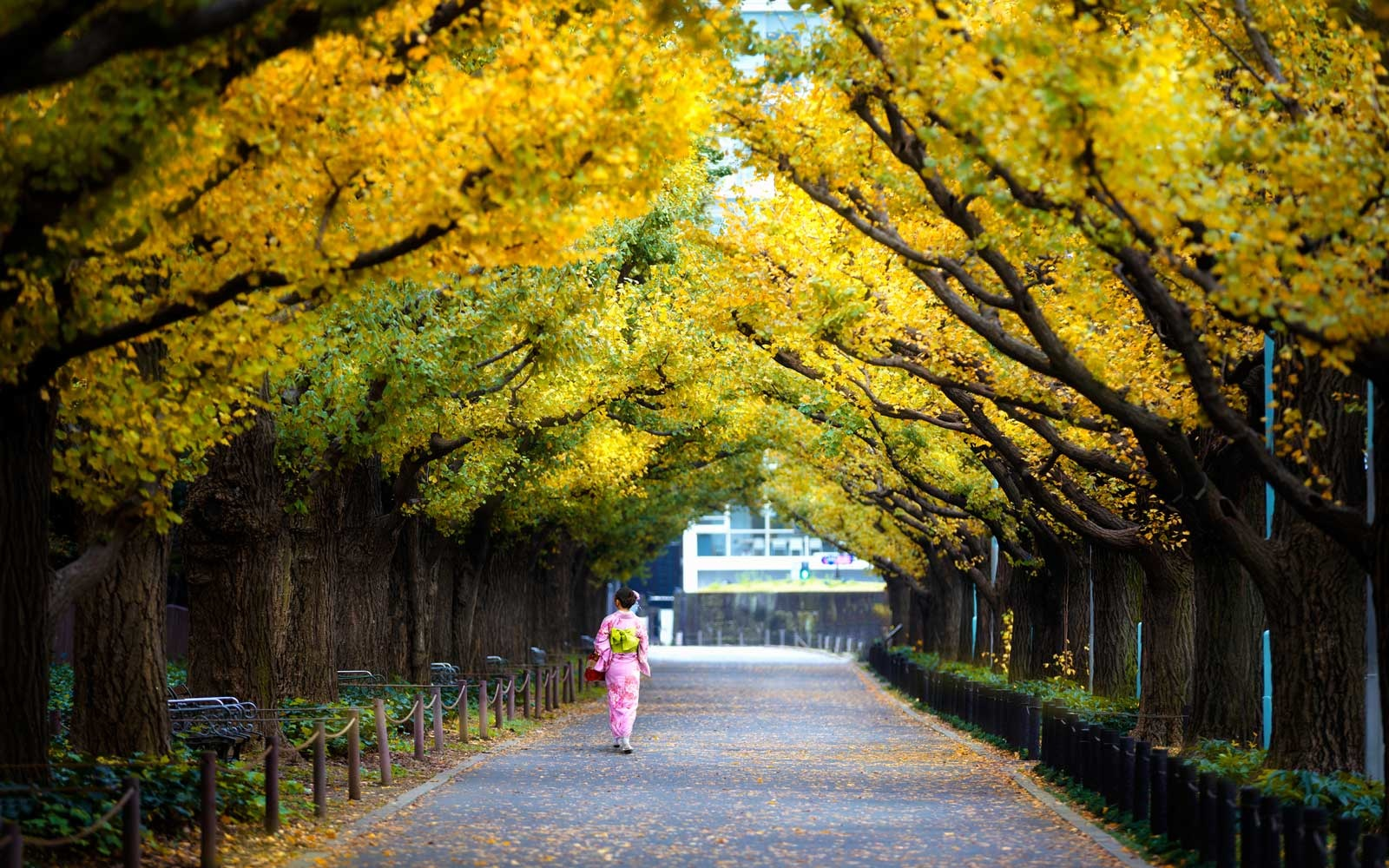 The most affordable places to visit this Fall