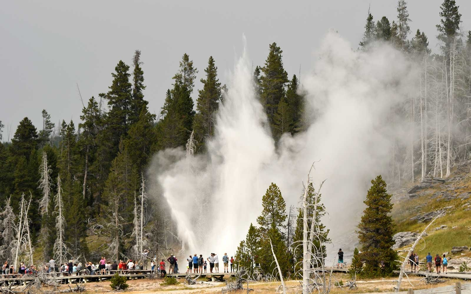 Tourists at Yellowstone National Park
