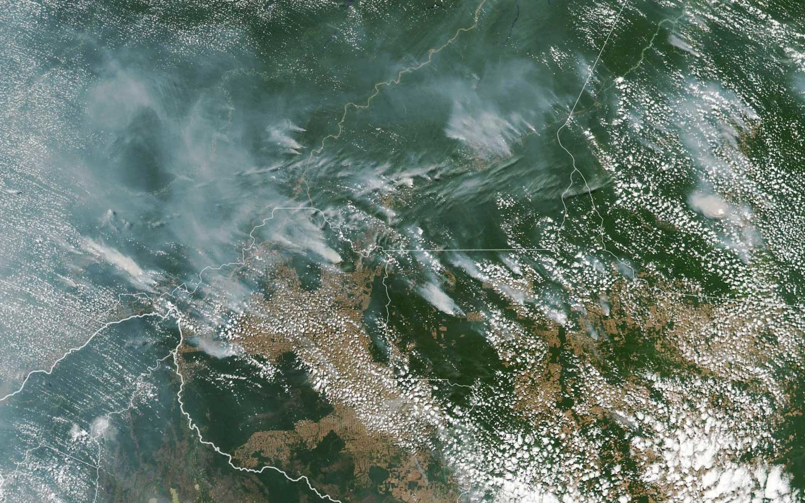 the amazon rainforest is burning  u2014 and experts say the