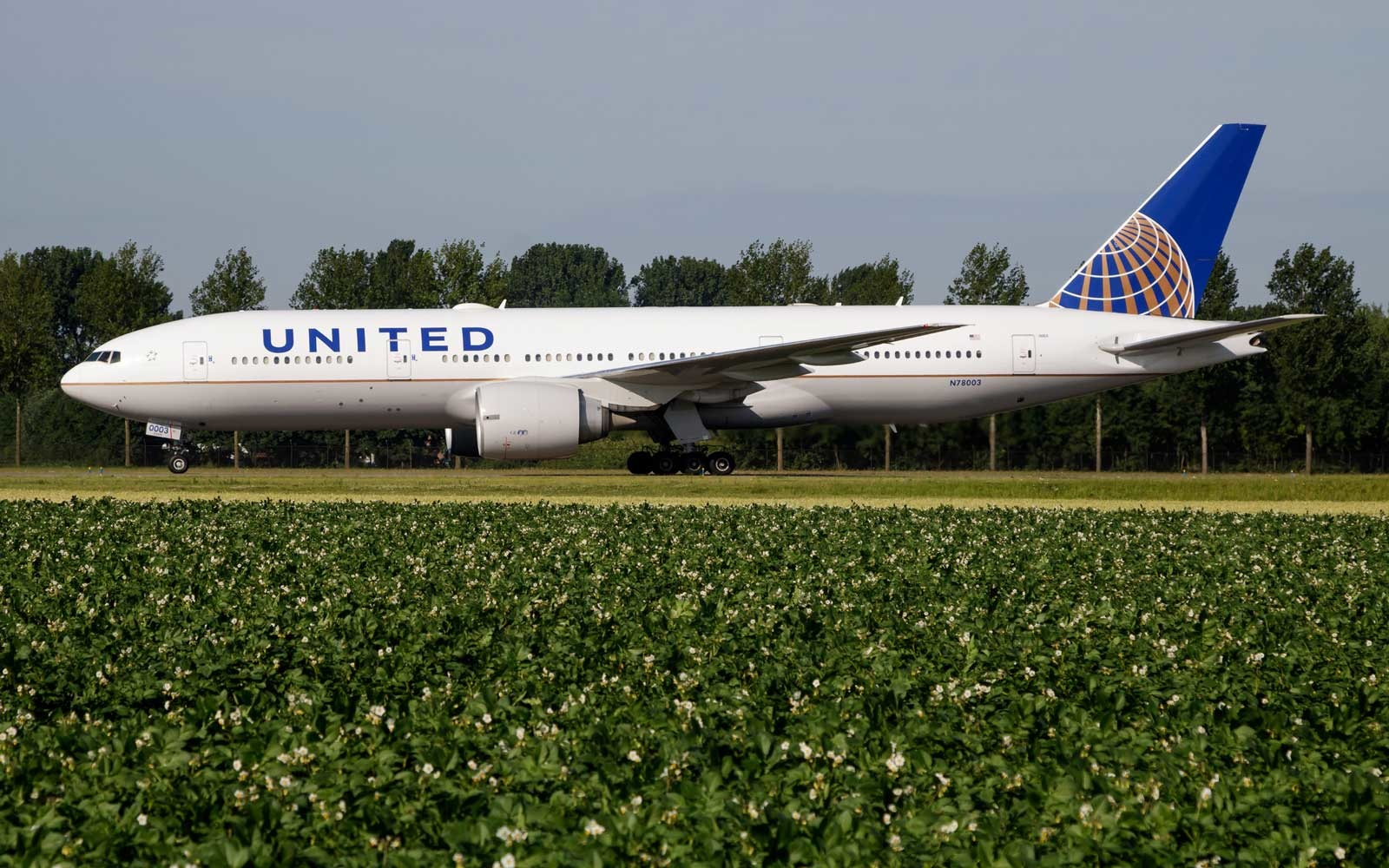 United is adding new international routes across the globe