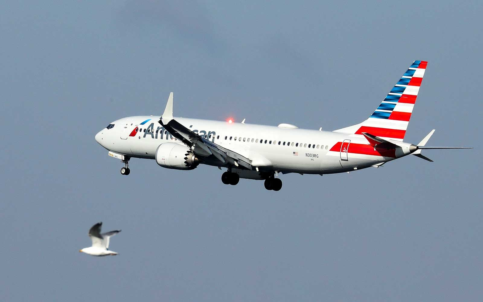American Airlines Boeing 737 Max 8