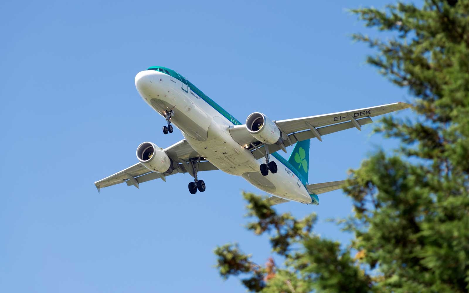 You can fly to Ireland for $399 round-trip with Aer Lingus's latest sale
