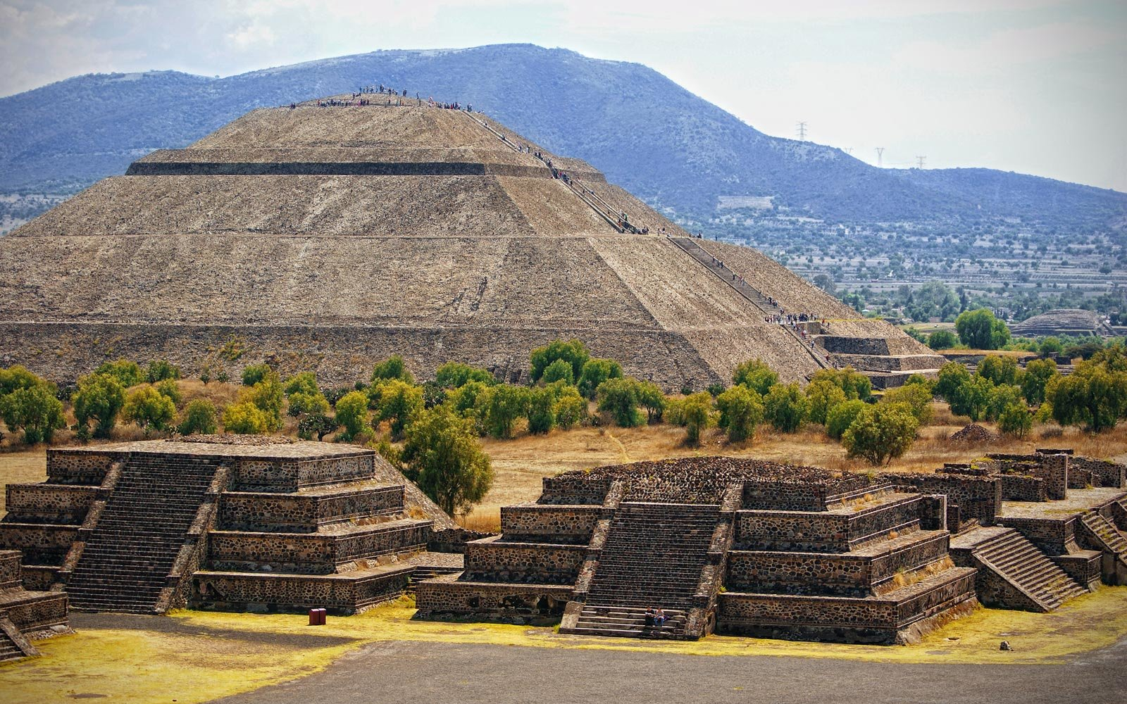 Mexico: An Expedition to a Hidden Butterfly World
