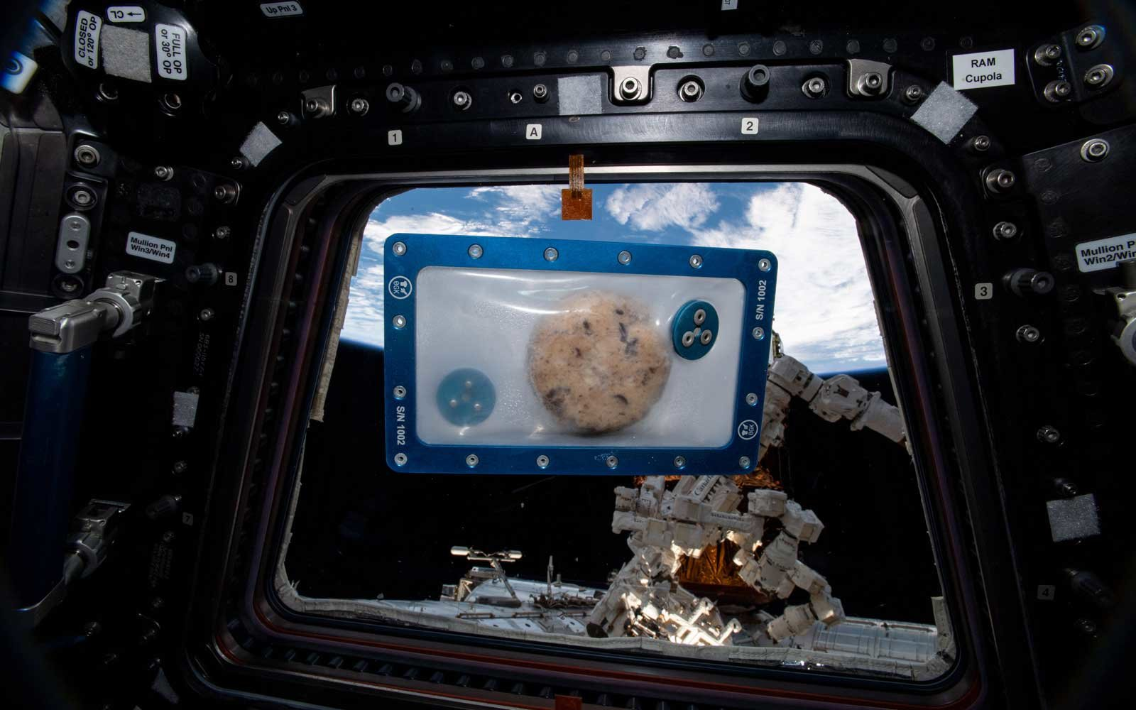DoubleTree by Hilton cookies will be baked in space on ISS