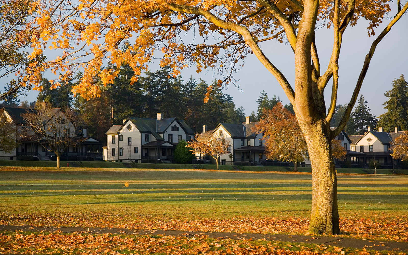 homes in fall on the Olympic Peninsula, WA