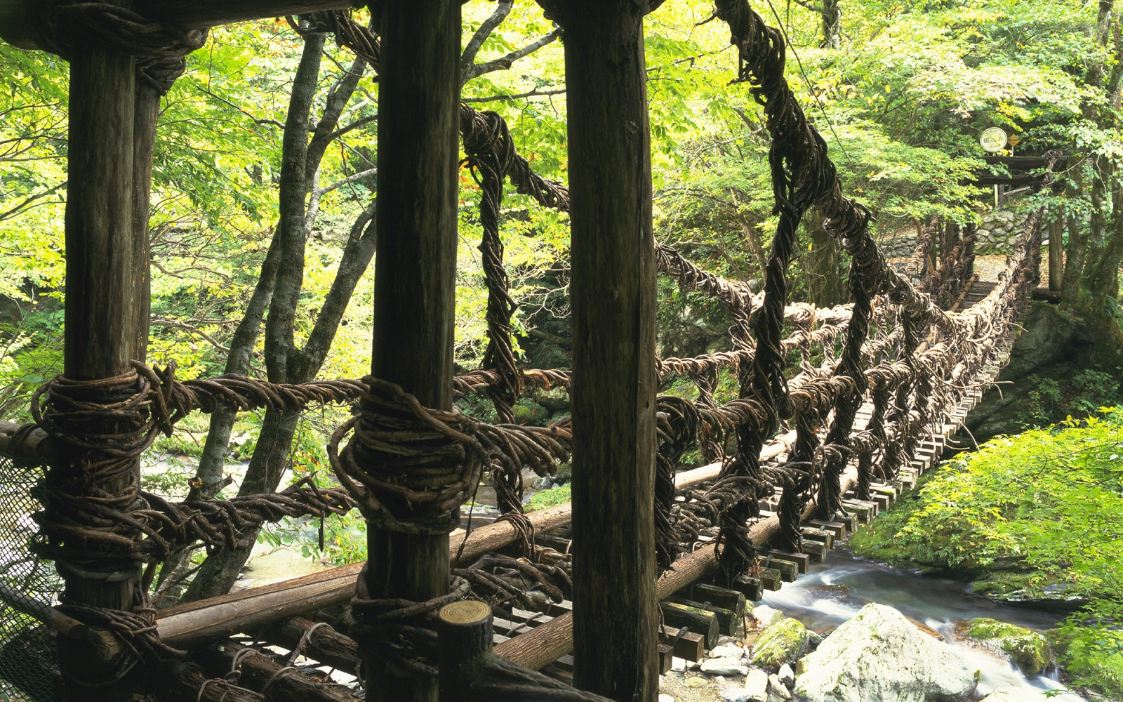 Iya Valley Vine Bridges, Japan