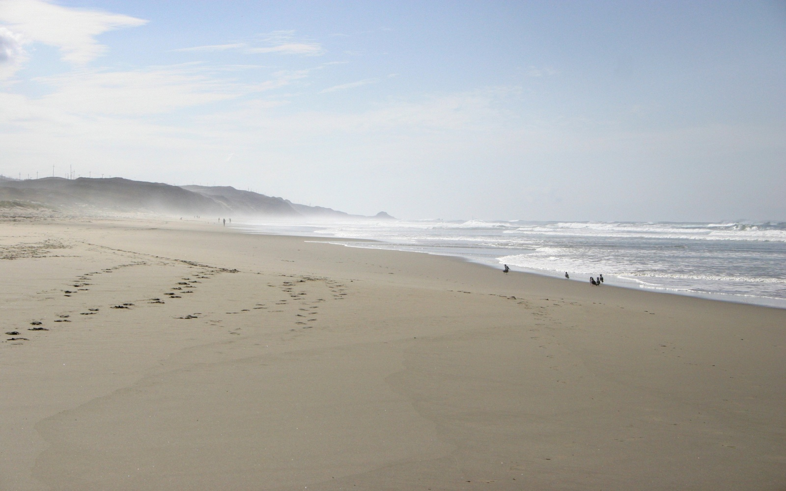 Surf Beach, Vandenberg, California
