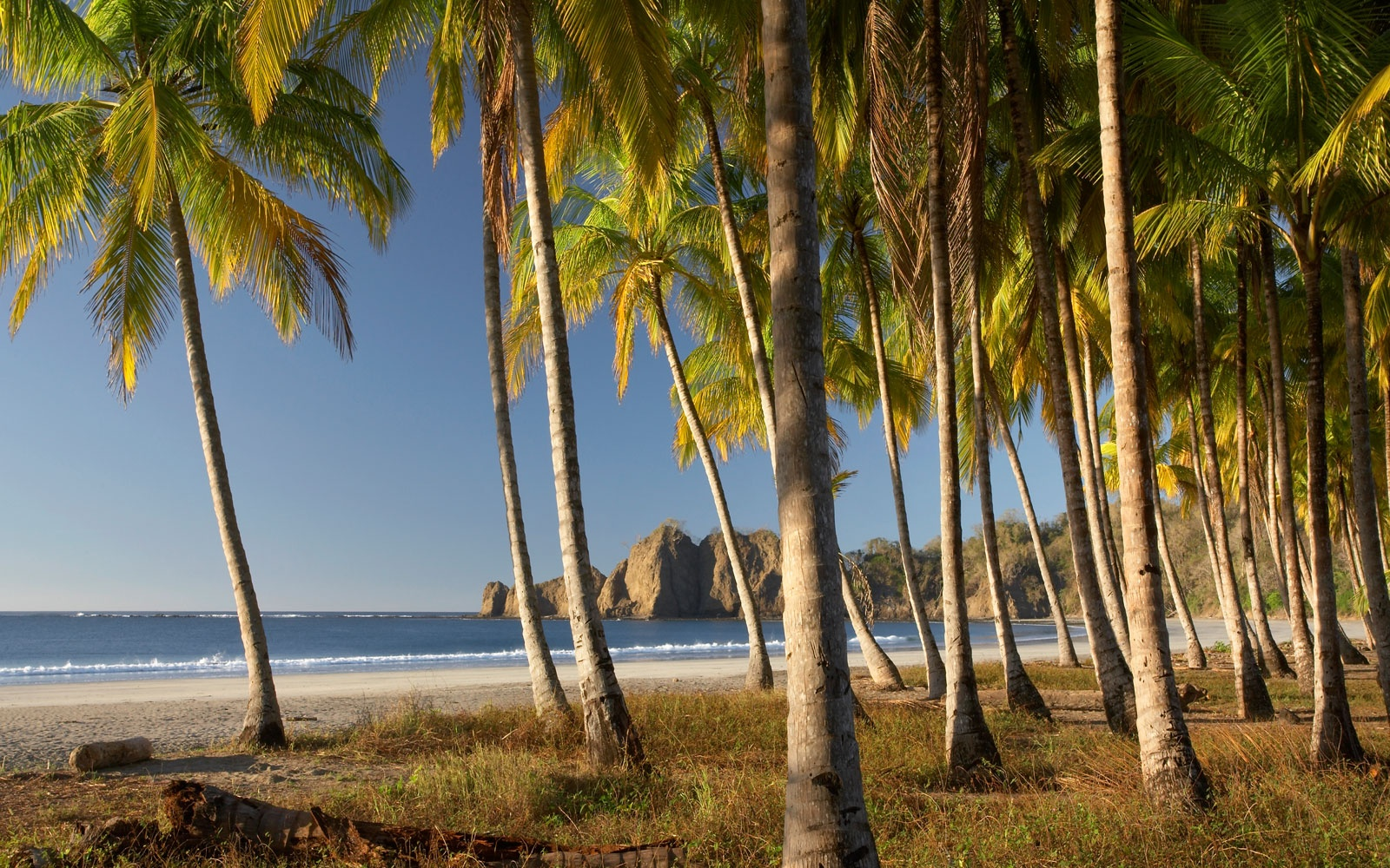 Playa Carrillo, Costa Rica