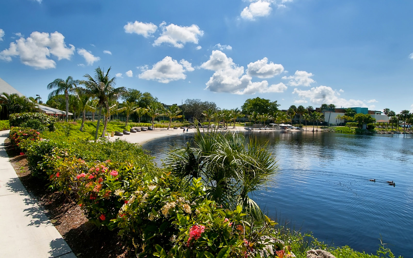 Weekly travel deals florida new york city st croix for All inclusive resorts in north america
