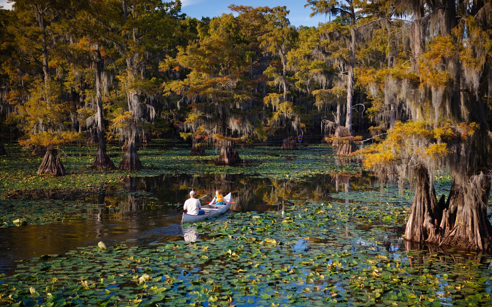 Caddo Lake, Texas and Louisiana