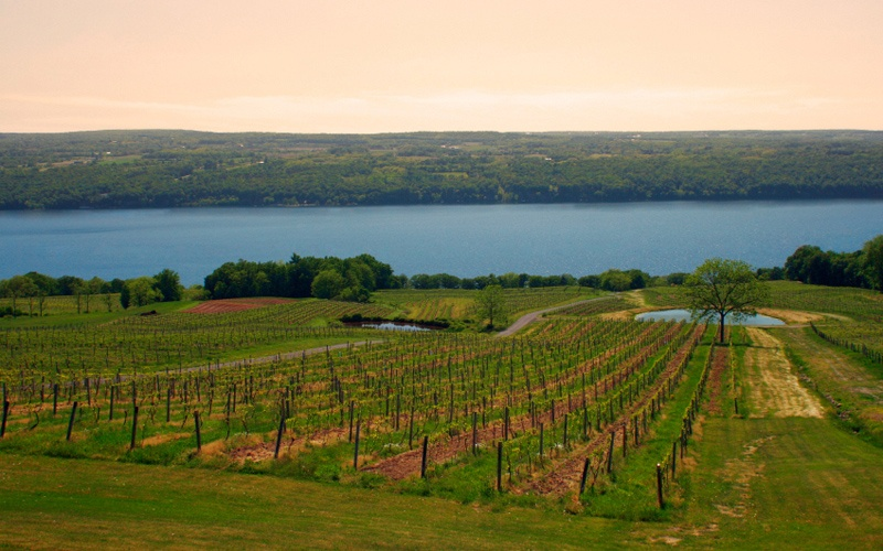 Finger Lakes: New York