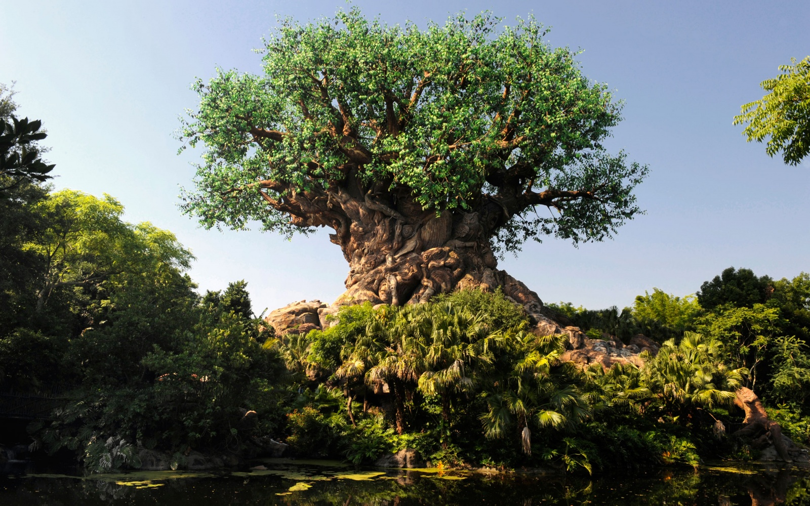 Disney's Animal Kingdom at Walt Disney World, Buena Vista, Florida