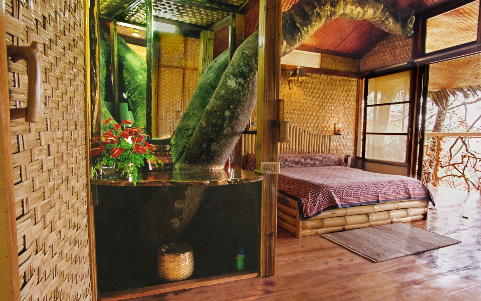 Best Tree Houses Exotic Tree Houses Pictures House