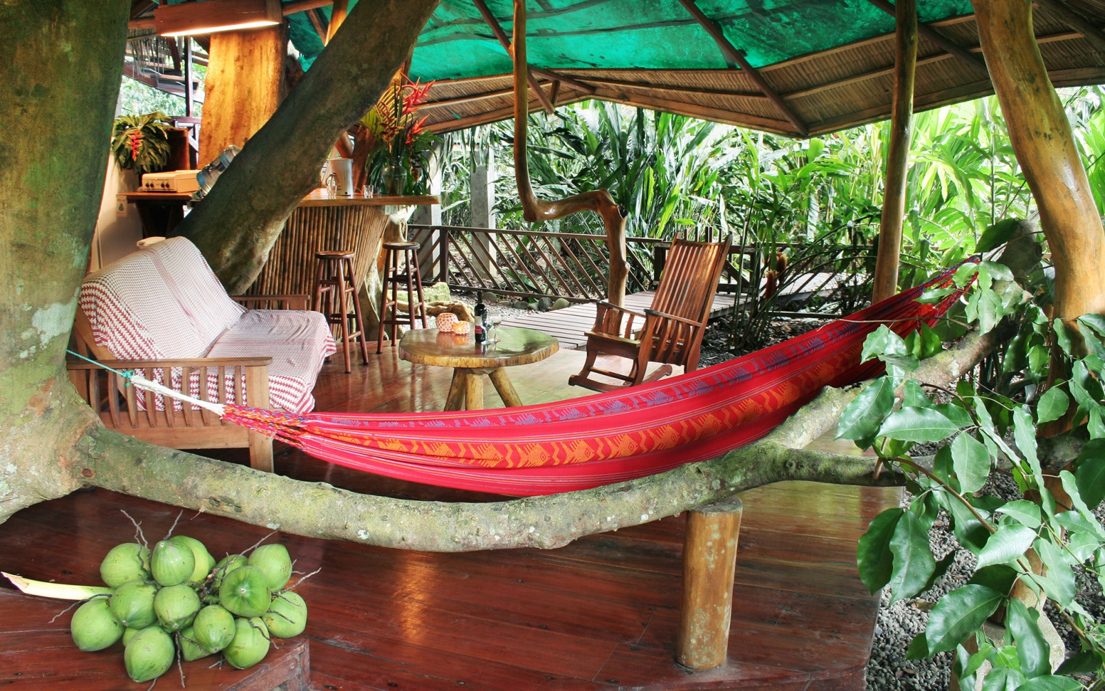 Tree House Lodge, Limón, Costa Rica
