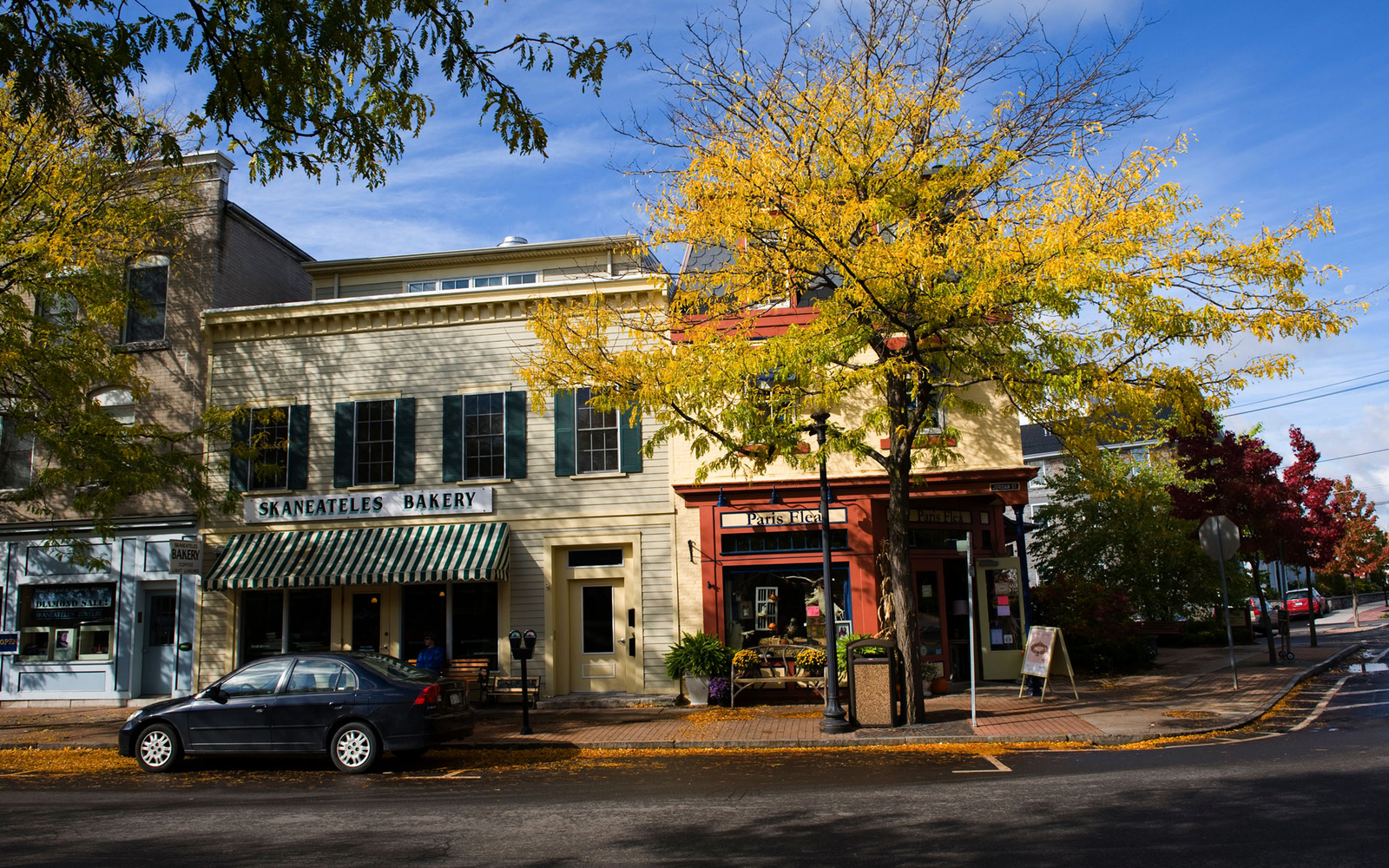 main street during autumn in Skaneateles, New York