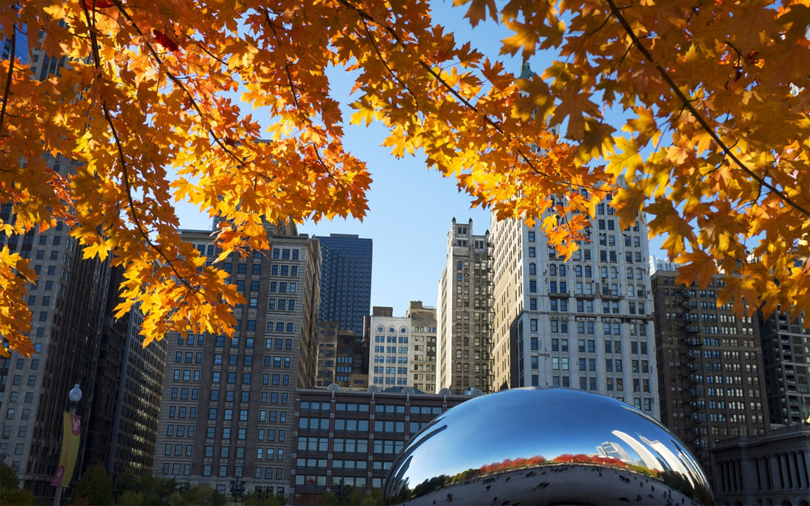Chicago, Illinois in fall
