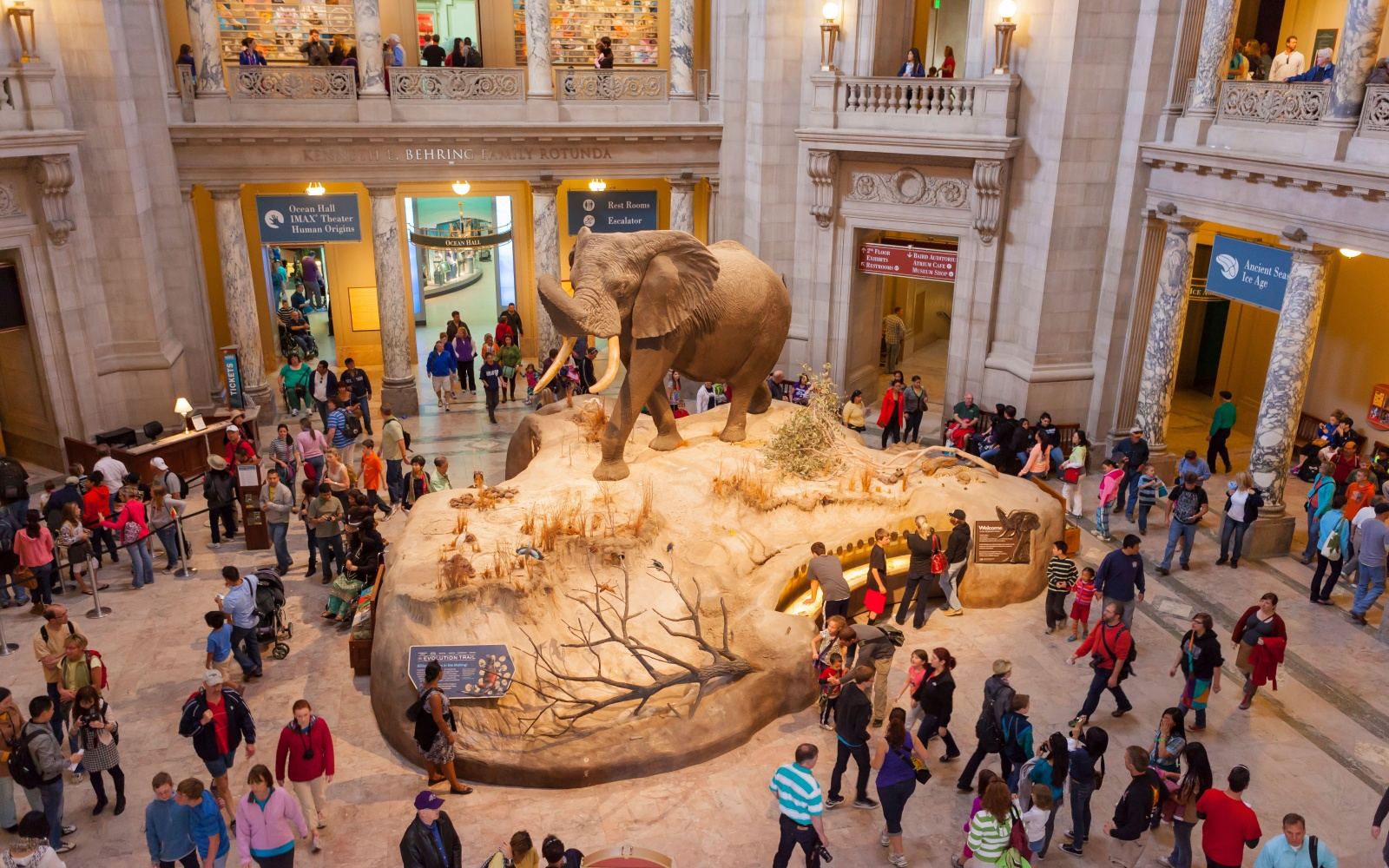Smithsonian National Museum of Natural History, Washington, D.C.
