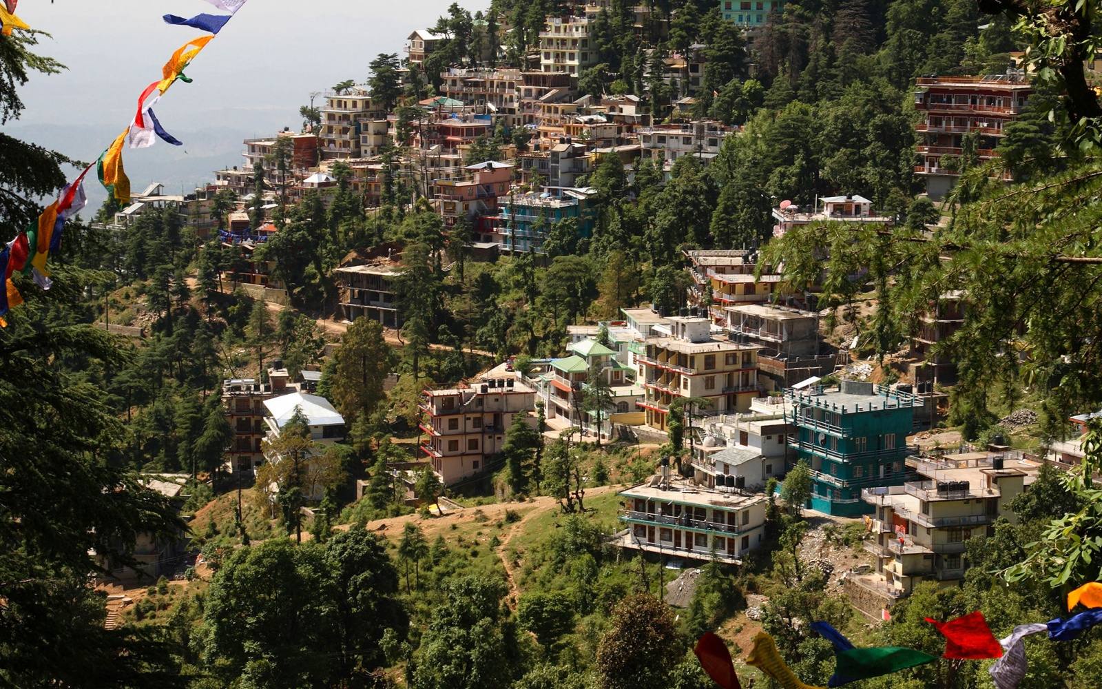 hillside buildings in Dharamsala, India