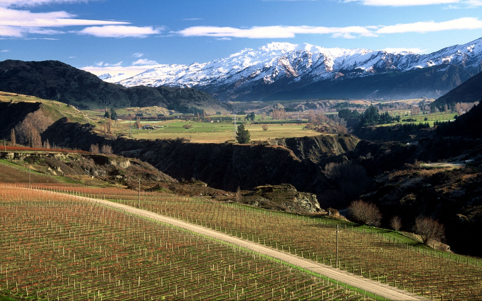 Chard Farm in Central Otago, New Zealand