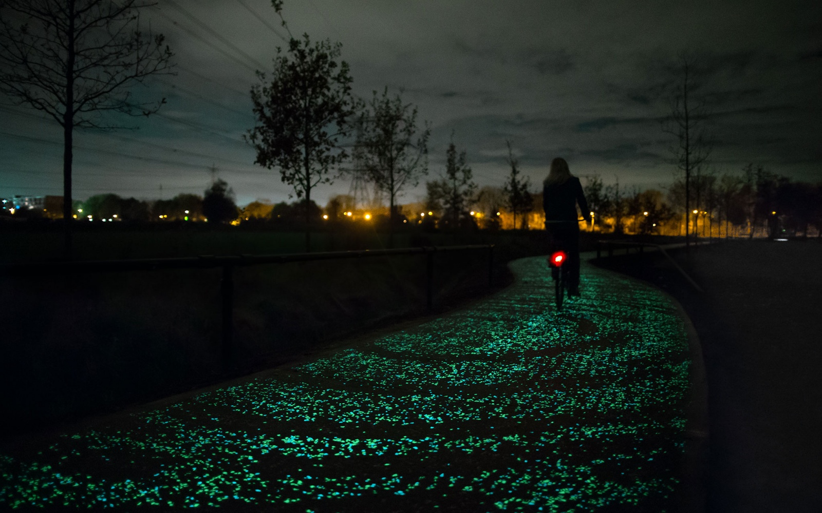 Starry Night Bicycle Path, Nuenen, Netherlands