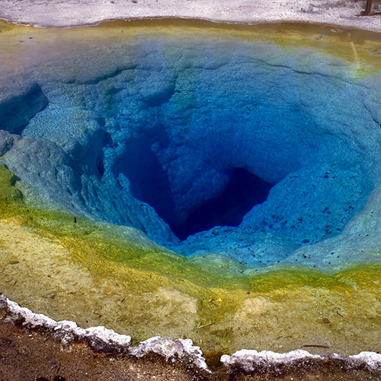 Morning Glory Pool at Yellowstone